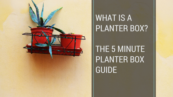 What is a planter box?